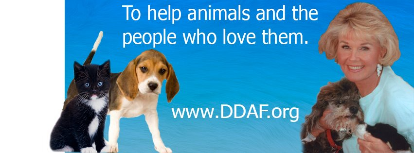 The Doris Day Animal Foundation (DDAF) image, courtesy of Facebook.